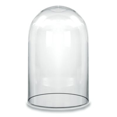Large Glass Cloche Display Dome Cover Bell Jar Glass Vases Depot