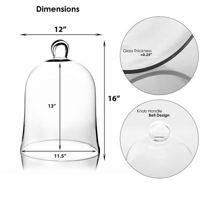 "16"" Glass Dome Cloche Plant Terrarium Bell Jars"