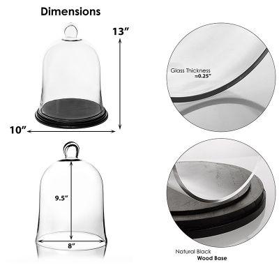 "13"" Glass Cloche Terrarium With Black Wood Base"