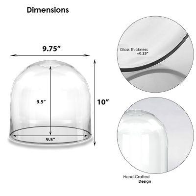 """10"""" Decorative Glass Dome Cloche Plant Terrarium Bell Jars"""