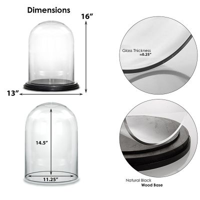 """16.5"""" Decorative Glass Dome Cloche Plant Terrarium Bell Jars with Wood Base"""