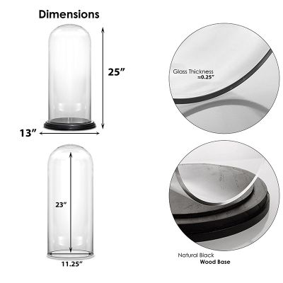 """Glass Cloche Display Dome With Black Wood Base (H:25"""" D:13"""")"""