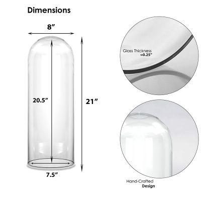 """21"""" Decorative Glass Dome Cloche Plant Terrarium Bell Jars"""