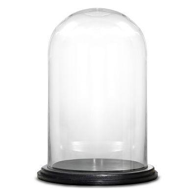 """16"""" Decorative Glass Dome Cloche Plant Terrarium Bell Jars with Wood Base"""