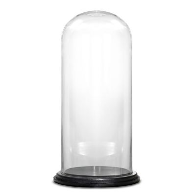 "20"" Decorative Glass Dome Cloche Plant Terrarium Bell Jars with Wood Base"