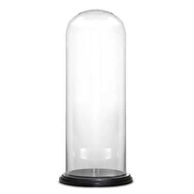 """20"""" Decorative Glass Dome Cloche Plant Terrarium Bell Jars with Wood Base"""