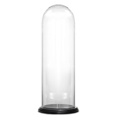"""Glass Cloche Display Dome With Black Wood Base (H:29"""" D:11"""")"""