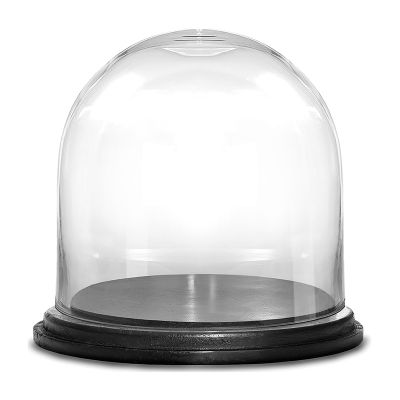 "Glass Cloche Display Dome With Black Wood Base (H:7"" D:7"")"