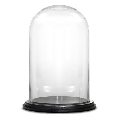 "11"" Decorative Glass Dome Cloche Plant Terrarium Bell Jars with Wood Base"