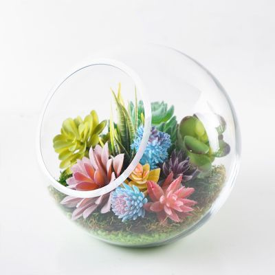 "8"" Decorative Glass Terrarium Slant Cut Asymmetrical Bubble Bowl"