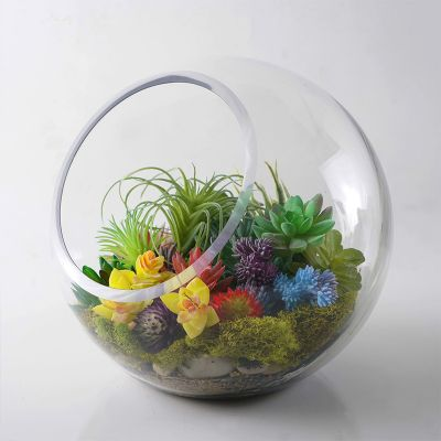 "10"" Decorative Glass Terrarium Slant Cut Asymmetrical Bubble Bowl"