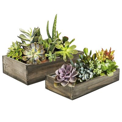 "Natural Brown Wood Rectangle Planter Box With Metal Zinc Liner (Set of 2)(12"" & 10"")"