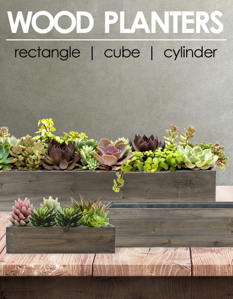 Rectangle Planter Box