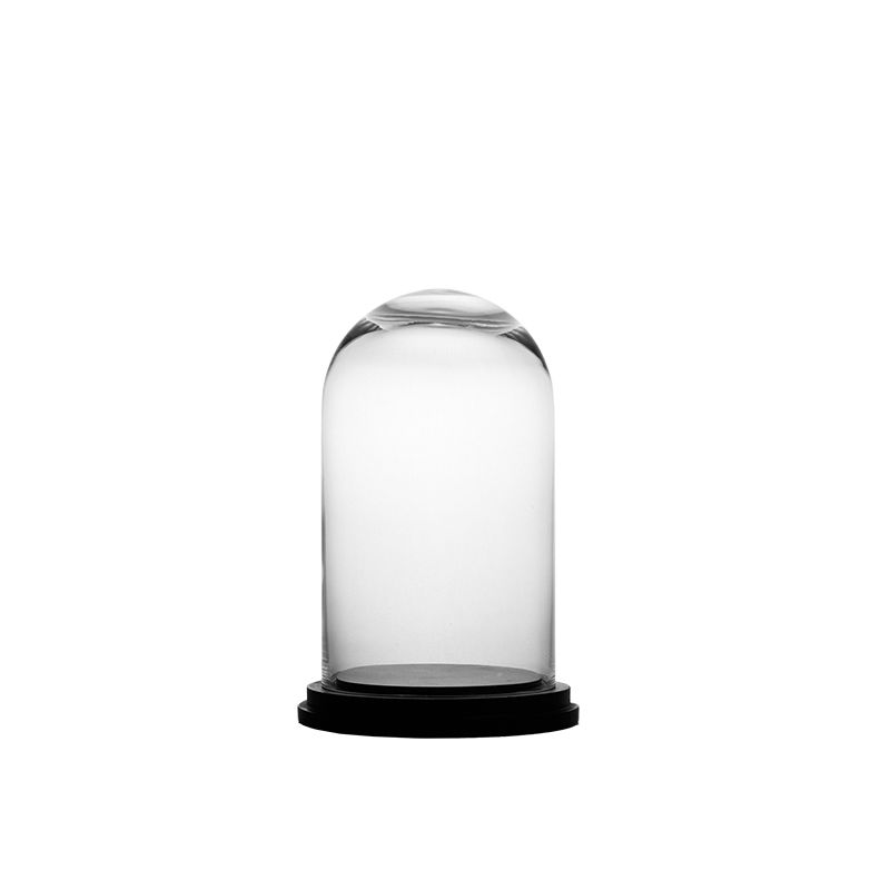 11 X 7 Inch Gl Dome Cloche Terrarium Bell Jar With Wood Base Vases Depot