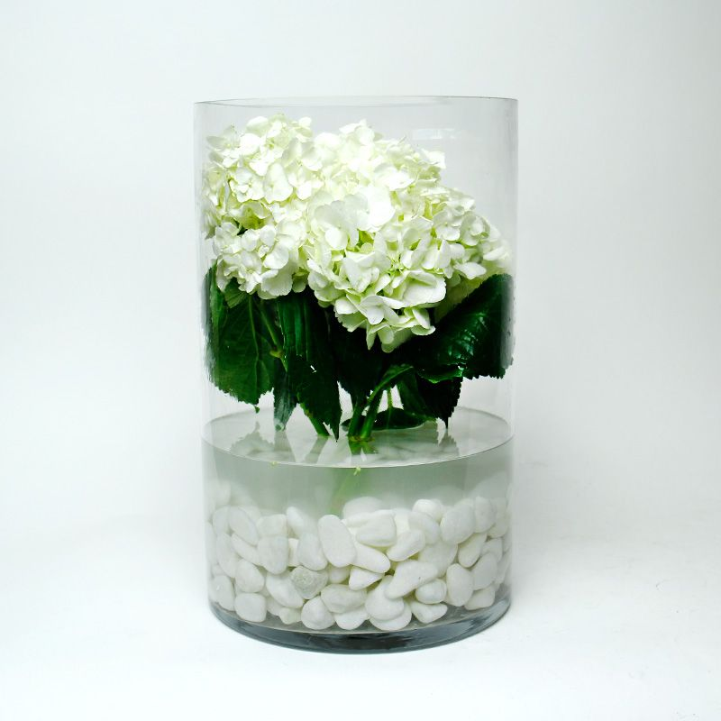 16 X 10 Inch Decorative Clear Glass Cylinder Vase Glass Vases Depot