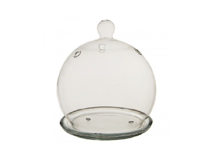 Mini Glass Cloche Bell Jar Terrarium Tray 45 Inch Decor