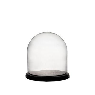 """11"""" Decorative Glass Dome Cloche Plant Terrarium Bell Jars with Wood Base"""