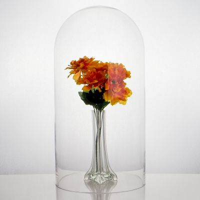 """18.5"""" Decorative Glass Dome Cloche Plant Terrarium Bell Jars"""