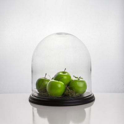 """13"""" Decorative Glass Dome Cloche Plant Terrarium Bell Jars with Wood Base"""