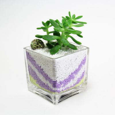 "4.75"" Glass Decorative Cube Vase"