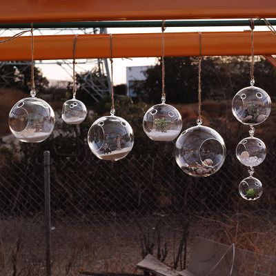 "4.5"" Glass Plant Terrarium Tealight Candle Holder"