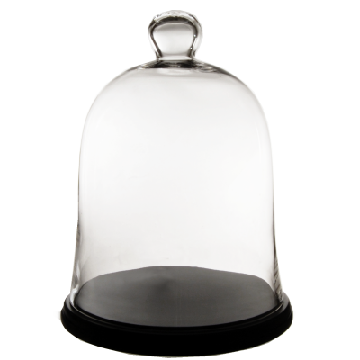 """17"""" Glass Cloche with Wooden Base"""