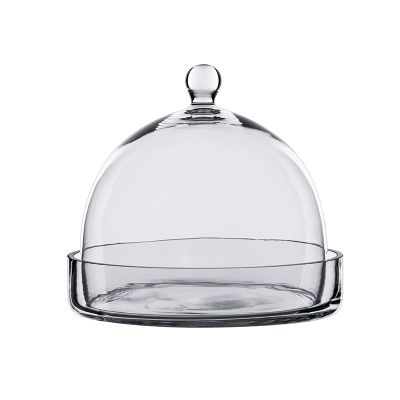 """7.5"""" Glass Dome Cloche Plant Terrarium Bell Jar with Glass Tray"""