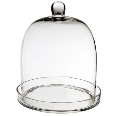 """14"""" Glass Dome Cloche Plant Terrarium Bell Jar with Glass Tray"""