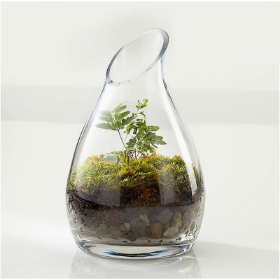"7.25"" Glass Curvy Carafe Vase with Slant Cut Opening"