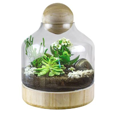 Terrariums Apothecary Jars Bell Jars Glass Vases Depot