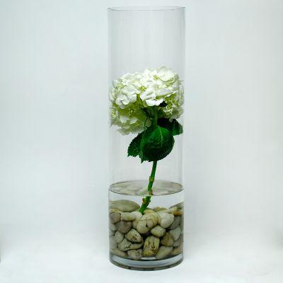 "20"" Decorative Glass Cylinder Vase"
