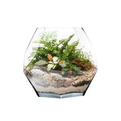 "7"" Geometric Faceted Gem Glass Terrarium Vases"