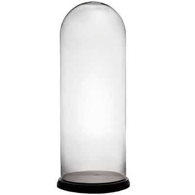 Glass Dome Cloche with Wood Base. H-28.5""