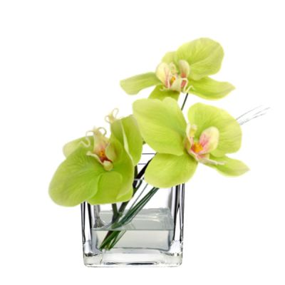 "3.15"" Decorative Glass Cube Vase"