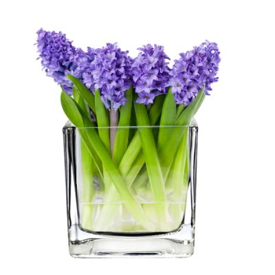 "4"" Decorative Square Cube Glass Vase"