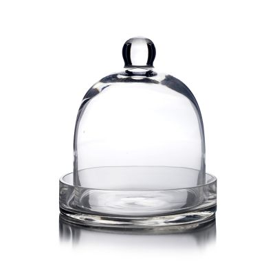 "8"" Glass Dome Cloche Plant Terrarium Bell Jar with Glass Tray"