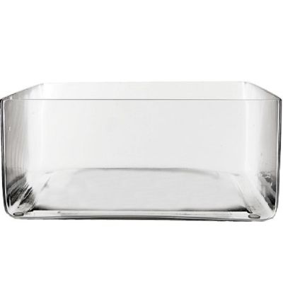 "4"" Rectangular Glass Vase"