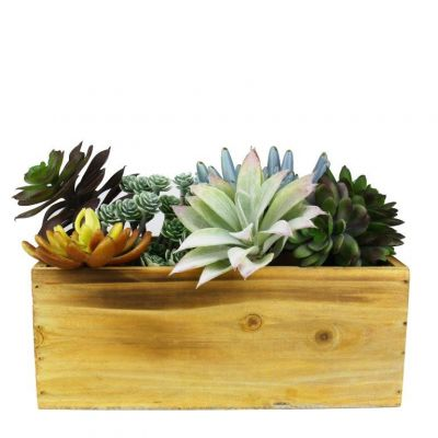"4"" x 10"" x 5"" Unfinished Rectangle Wood Box Planter with Plastic Liner (Free Shipping)"