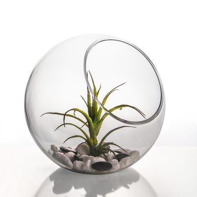 """8"""" Decorative Glass Terrarium Slant Cut Asymmetrical Bubble Bowl"""